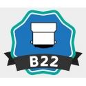 Ampoules LED B22